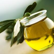 canigou-huile-olive-aoc-66